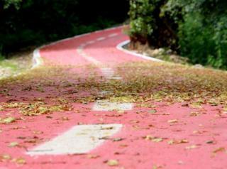 Ministrul Mediului vrea piste pentru biciclisti