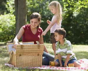 Spatii amenajate pentru picnic si gratare in Bucuresti
