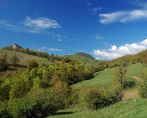 Urmasii nobilului Daniel Banffy vor 100.000 de hectare din Romania