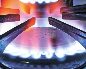 GDF SUEZ Energy Romania: Investitie de 150 de milioane de euro in reteaua de gaze naturale, in acest an
