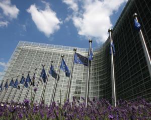 Bruxellesul este de vina pentru criza economica
