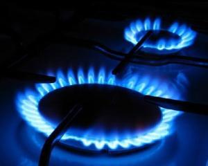 GDF SUEZ Energy Romania: Pretul gazului trebuie marit