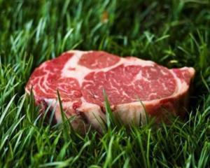 Alimentatia viitorului: Hai sa pastem o friptura!