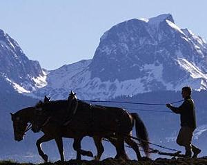 Un fermier elvetian a refuzat sa-si vanda terenul pentru 32 milioane de dolari