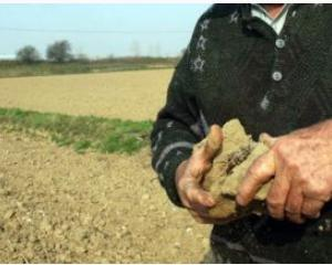 Agricultorii loviti de seceta cer certificate de forta majora
