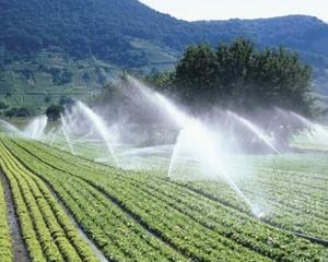 Romania vrea 400 de milioane de euro de la UE pentru irigatii