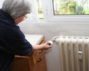 Ordonanta privind pretul local de referinta la energie, admisa de Senat