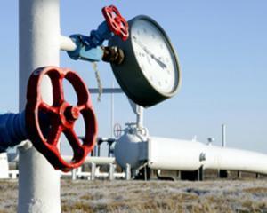 PDL nu vrea ca populatia sa suporte cresterea pretului la gaze