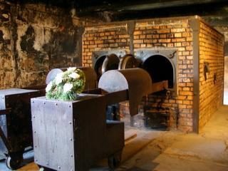Record de vizitatori in 2010 la fostul complex de lagare Auschwitz-Birkenau