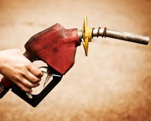 Mariana Gheorghe, Petrom: Scumpirea motorinei reflecta cererea in crestere pentru acest tip de combustibil