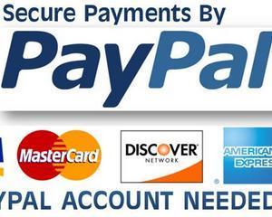 PayPal lanseaza Chip&PIN in Marea Britanie