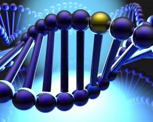 Infidelitatea este scrisa in gene. S-a descoperit gena