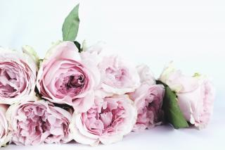 De ce daruim trandafiri de Valentine's Day