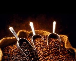 Europenii nu-si mai permit sa bea cafea