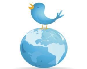 Doar 8% dintre brandurile de top au trecut la noul design Twitter