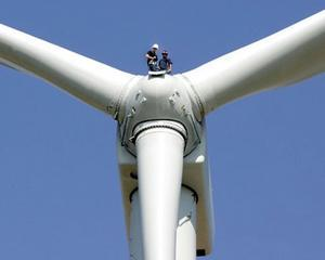 Transelectrica: La sfarsitul lui 2011, 10% din electricitate ar putea fi produsa de forta vantului
