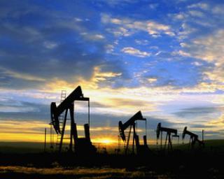 Pretul petrolului creste piramidal