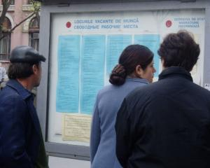 AMOFM: 540 de posturi vacante pentru somerii din Capitala