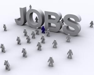 Tjobs.ro: Jumatate din joburile straine sunt sezoniere