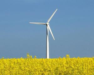 General Electric va furniza turbine eoliene de 30 de milioane de euro pentru Parcul Cerna
