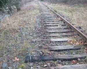 Amenzi de pana la 4.000 de lei si anularea autorizatiei de colectare pentru firmele care cumpara sine de tren de la persoane fizice