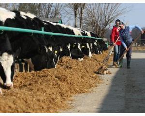 Unii agricultori pot primi sprijin financiar comunitar