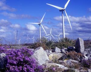 BERD si IFC imprumuta EDP Renovaveis cu 115 milioane de dolari pentru a dezvolta eoliene in Romania