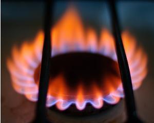 E.ON si Gaz de France cer scumpirea gazelor in trei etape