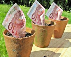 Donato de Rosa, Banca Mondiala: Companiile straine nu au contribuit prea mult la economia Romaniei