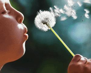 Idei preconcepute despre alergii