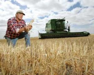 Banca Comerciala Carpatica acorda credite APIA pentru fermieri