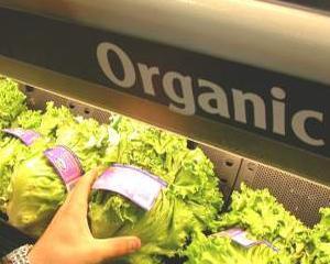 Studiu: Consumatorii de mancare organica sunt mai predispusi sa devina egoisti