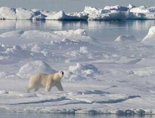 S.O.S.: Oceanul Arctic este mai cald decat acum 2.000 de ani!