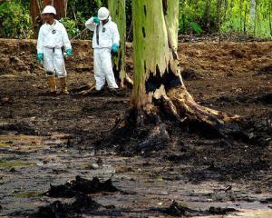 Chevron, obligata sa plateasca despagubiri de 8 miliarde de dolari pentru poluarea Amazonului