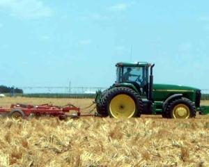 Agricultura: Mai multe cereale si fructe, mai putine legume