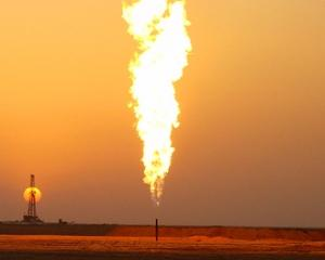 Zeta Petroleum: La Bobocu exista importante zacaminte de gaze naturale