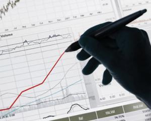Coface: Economia Romaniei va ajunge la nivelul din 2008 abia in 2014