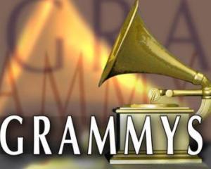 Castigatorii celei de-a 53-a gale a premiilor Grammy
