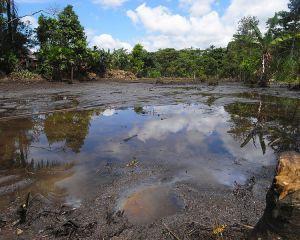 Chevron versus satenii ecuadorieni. Miza este de 18 miliarde de dolari