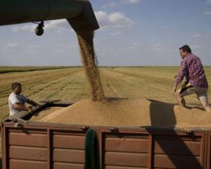 Incalzirea globala - vinovata pentru cresterea preturilor produselor alimentare
