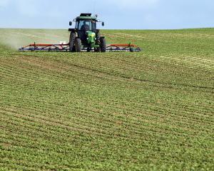 Strainii detin 700.000 de hectare de suprafata agricola in Romania