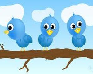 TOP 10: Furnizorii sfaturilor de leadership de pe Twitter