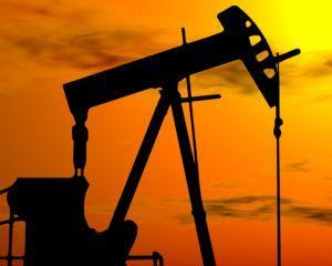 Revolutie in industria gazelor de sist