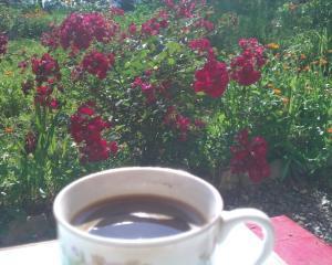 Cafeaua te face mai puternic?