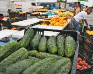 UE pregateste banii pentru legumicultorii afectati de isteria E.coli. Despagubirile vor fi acordate peste cateva zile
