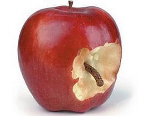 Apple va elimina virusul Mac Defender la urmatoare actualizare a Mac OS X
