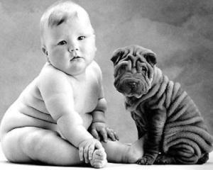 Mancarea bio se retrage. Aerul este vinovat pentru obezitatea infantila - STUDIU
