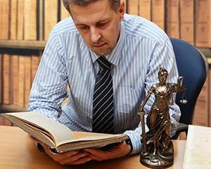 Bursa in Germania pentru avocati!