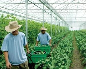 CE va propune o taxa pe tranzactiile financiare si inghetarea cheltuielilor agricole