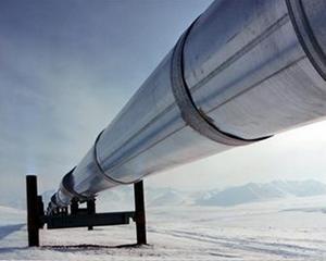 Ministerul Economiei ne asigura ca nu vor fi probleme cu furnizarea de gaze naturale